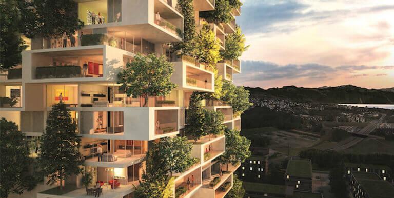 Em busca das nossas origens: a integração da natureza muito além da horta de apartamento